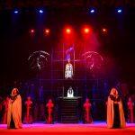 собор парижской Богоматери (9)